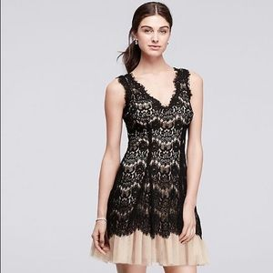 Betsy & Adam Black And Nude Lace Dress